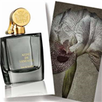 Iris Nazarena Aedes de Venustas for women and men