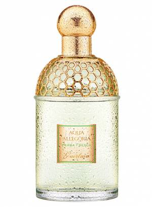 Aqua Allegoria Herba Fresca Guerlain for women and men